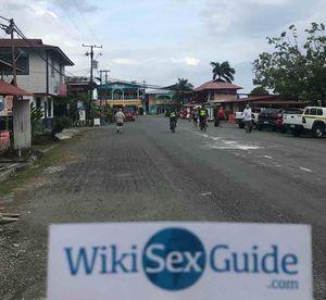 SEX ESCORT in Bocas del Toro
